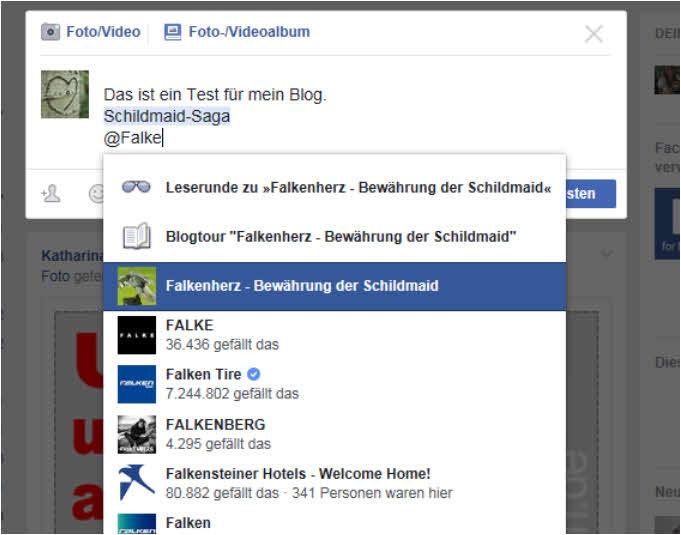 blog-fb-fanpagesfalkenherz1