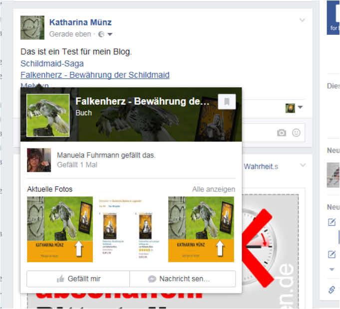 blog-fb-fanpagesfalkenherz2