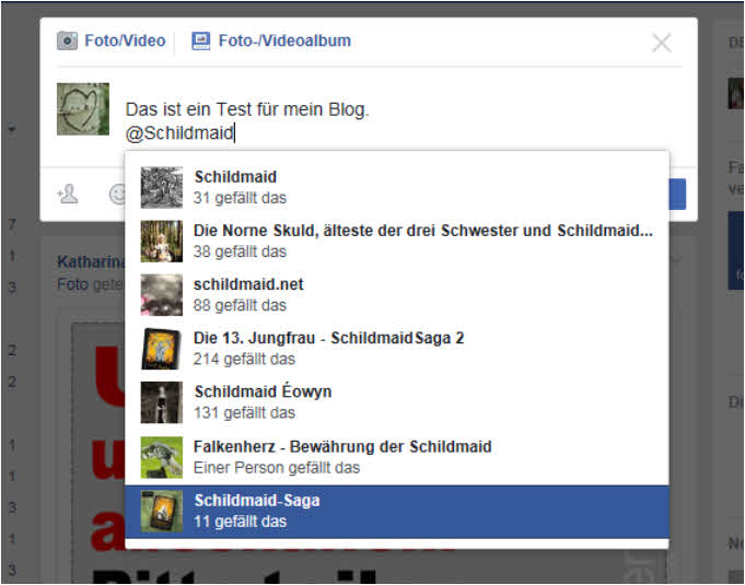blog-fb-fanpagesschildmaid1